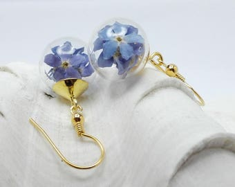 true forget-me-not 925 silver plated earrings 0066/925/V