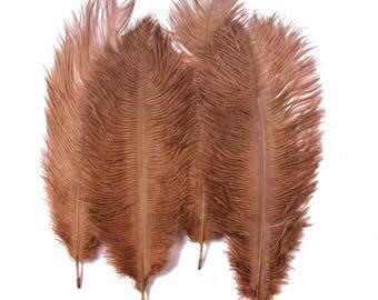 "Ostrich Feathers x 5  Mocha 6""- 8"" / 15 - 20 cm  FREE UK Postage"