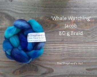 Jacob hand dyed braid in 'Whale Watching' 80 g