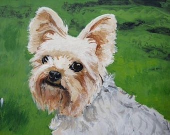 Yorkshire Terrier/Yorkshire Terrier with Toys/Yorkshire Terrier Acrylic original