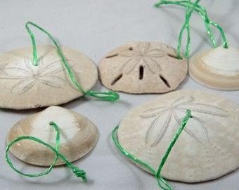 Sand Dollar Ornaments