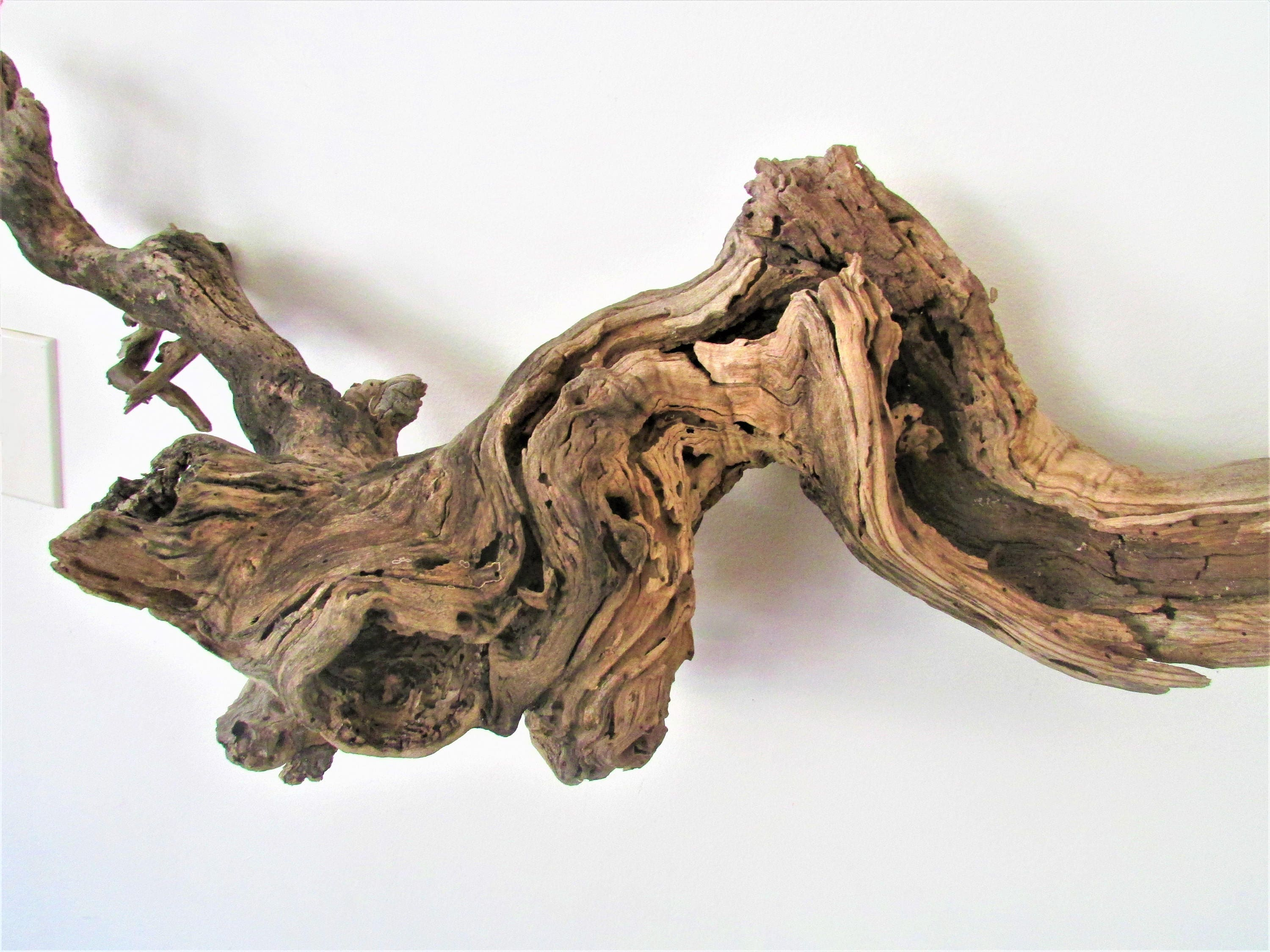 Driftwood wall art-XL36Long Hollow Driftwood large