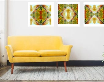 Golden Gaze Trio - 20x20cm Prints