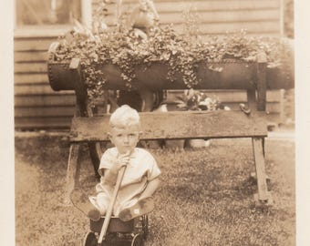 Vintage Photo Cute Baby Boy in Wagon by Garden Found Antique Black & White Ephemera Photography Interior Design Vernacular Art