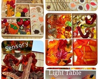 Fall Reggio Emelia Inspired Loose Parts Light Table Tray Sensory Math Manipulatives Memory Matching  Montessori Waldorf Autumn Nature Table