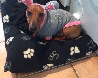 Easter Rabbit Costume for Mini Dachshund Dog
