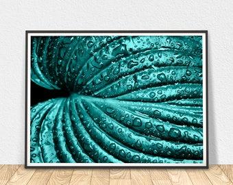 Green Leaf - Wall Art Print, Water Drops Print, Leaf Art Poster, Home Decor Wall Art, Rain Drops Art, Leaf Water Drops Art, Digital Poster