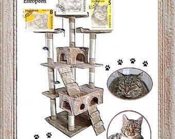 Cats of Breed - Series of Six stamps canceled from Bulgaria, issued in 1989 - Philatelic Art - Montage photos and stamps