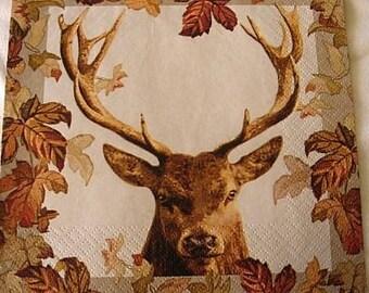 Deer wood paper towel
