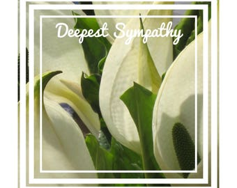 """Individual 140mm Square Blank Sympathy Card  """"Deepest Sympathy"""" Add own message By Crannycards"""
