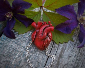 Human heart pendant Anatomical heart necklace