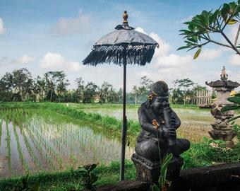 Bali Travel Photo, Large Wall Decor, Landscape Photography, Contemporary Art, Photos on Wood