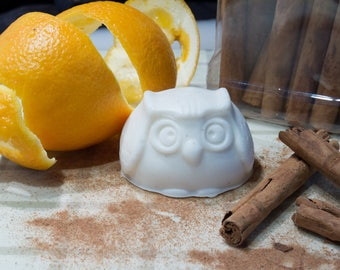 A Youthful Glow - Natural Owl Soap (Orange and Cinnamon)