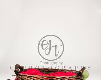 Basket of Red Roses Valentine Backdrop/ Valentine Backdrop