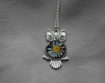 Necklace + pendant OWL resin and dried Daisy flower