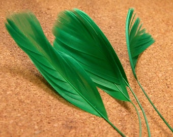 has 5 feather teal-green stem - 14 cm 19 cm - 05 PLU