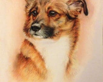 Your animal photo as a pastel drawing on solid A3 paper