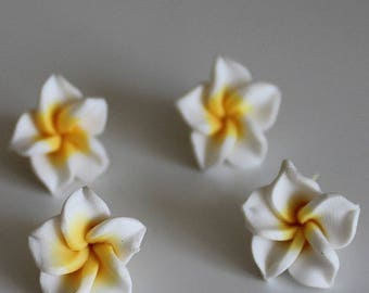1 set of 4 flowers of Polynesia, 15 mm, white, yellow polymer