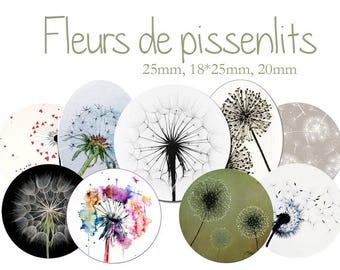 "Cabochons collage sheet / digital ""dandelions, flowers, spring, flowers, seed, wind"" round"