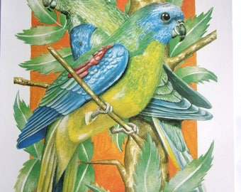 10 sheets DECOUPAGE CANDURE scrapbooking - birds EXOTIC ref. 630