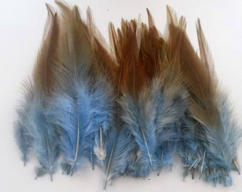 set of 10 blue feathers mixed 10-15cm