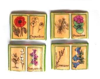 10 beans yesteryear seagrass, miniature book in porcelain, beans for cake or collection, botanical, plant - gardener gift