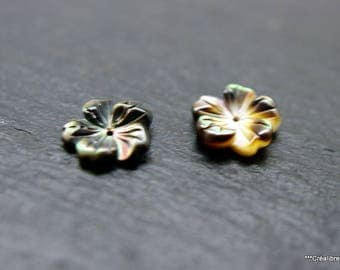 2 flowers with Pearl gray color 10 mm