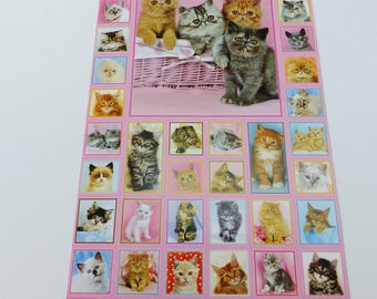 48 square and rectangle kitties cat stickers stickers