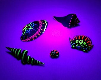 5 Piece Neon Painted Textured Shells