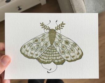 Green moth - giclee print