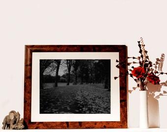 Landscape Photographic Print, Darkroom Print