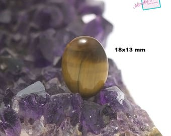 "cabochon 1 ""Oval 18 x 13 mm"" Tiger's eye, natural stone"