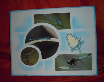 picture of Dragonfly glued on canvas