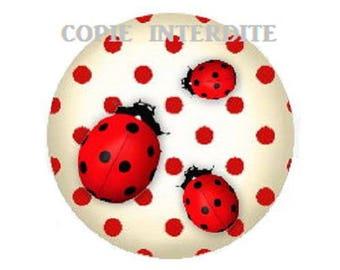 25mm, cabochon three cute ladybugs