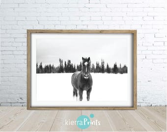 Horse In Wild Print, Digital Download, Animal Art, Wall Decor, Black and White, Photo, Trending, Horses, Home Decor, Large Poster