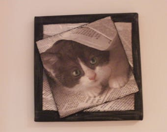 Picture home deco hidden cat