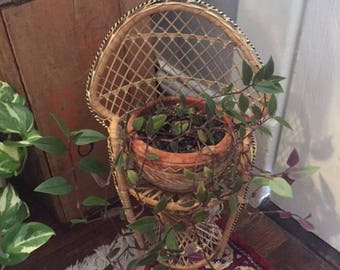Adorable mini rattan plant holder