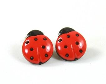 Ladybug earrings, Ladybug studs, Bug earrings, Red black bug earrings