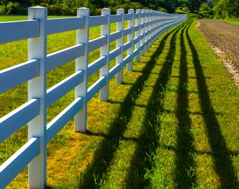 The Fence And The Shadow.