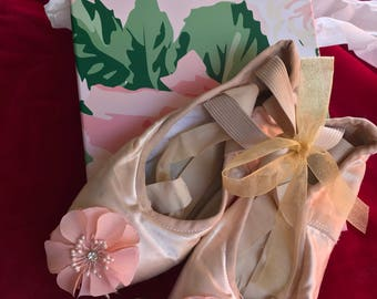 Beautifully Designed Ballet Pointe Shoes