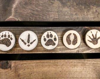 Magnets - Animal Tracks