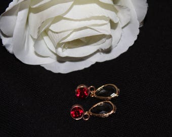 Earrings Strass Red and natural stone