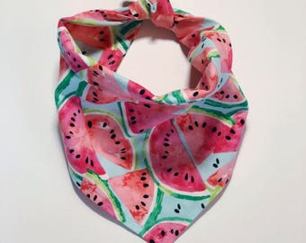 One in a Melon | Watermelon Pet Bandana | Dog Bandana | Cat Bandana |