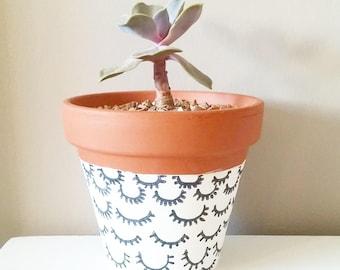 30 Custom Succulents & Planters- Boho Wedding Decor~ Bohemian Furniture~ Indoor Gardening~ Wedding or party favors- decorative centerpieces