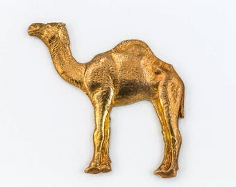 30mm Raw Brass Camel  #CHA147