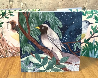 Set of 3 bird cards