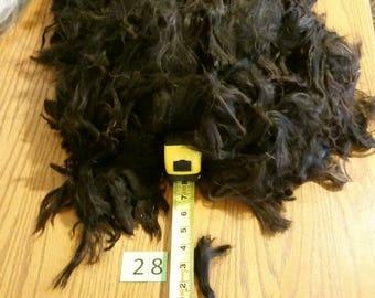 4# 10 oz true black raw suri alpaca #28