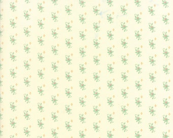 Hazel and Plum - Pumpkin Seeds in Cream and Pond: sku 20293-27 cotton quilting fabric by Fig Tree and Co. for Moda Fabrics