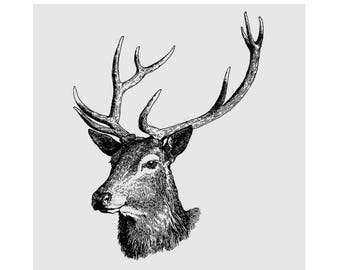 Woodland Deer Head Cling Mount Rubber Stamp