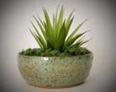 Ceramic Planter - Succulent Pot  - Cactus Planter - Wheel Thrown Pottery - Stoneware
